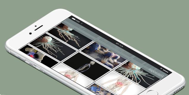 Os presentamos Anatomed, imágenes médicas de múltiple uso