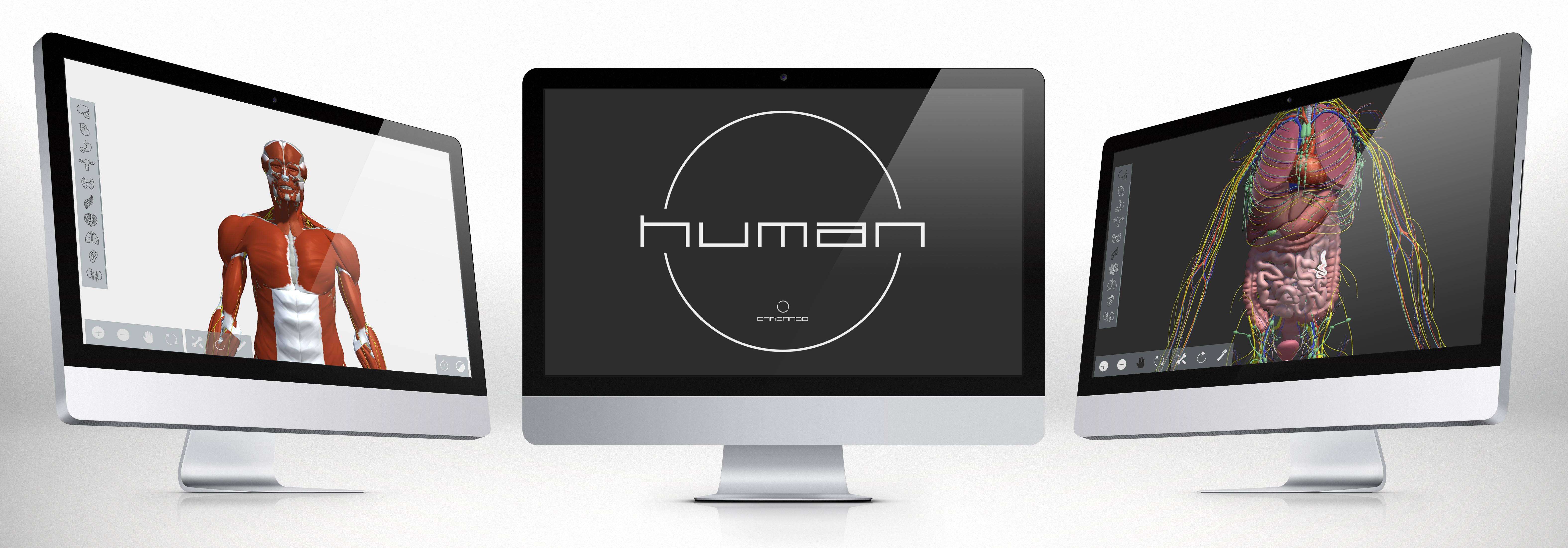 Human atlas interactivo 3D anatomía