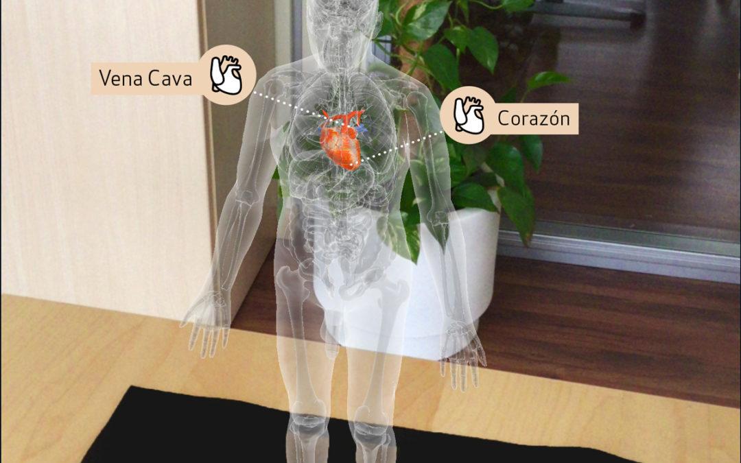 Human virtual con RA